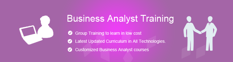 Business Analyst Program