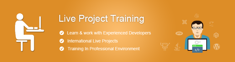 live-project Training