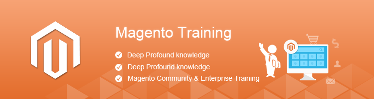 Magento Training Program