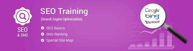 SEO Training Program